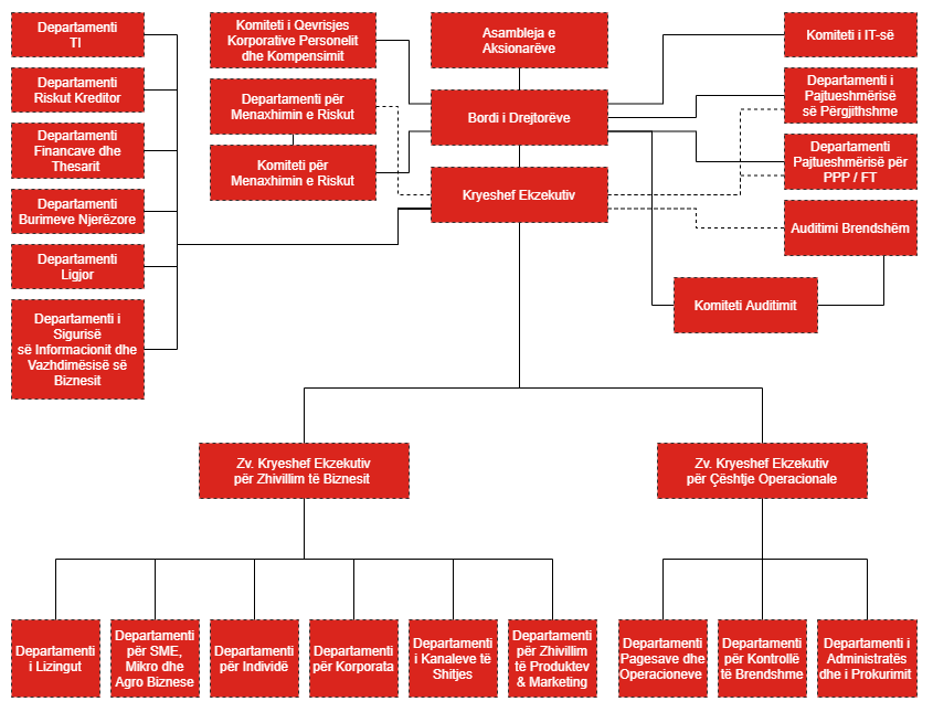 Organizational Chart of the Bank